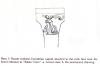 Spelaion- molded corinthian capital from sabas cave(Patrich 1991:pl.50).